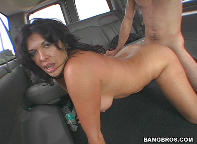 Bangbus porn pics