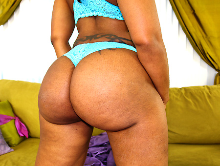 bangbros The Best Ass Ever